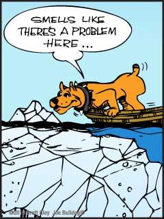 Group Leadership Problems 79